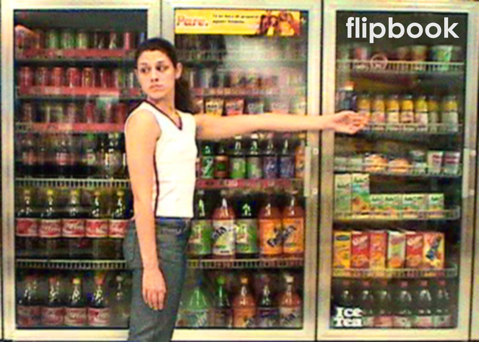 Flipbook (2004)